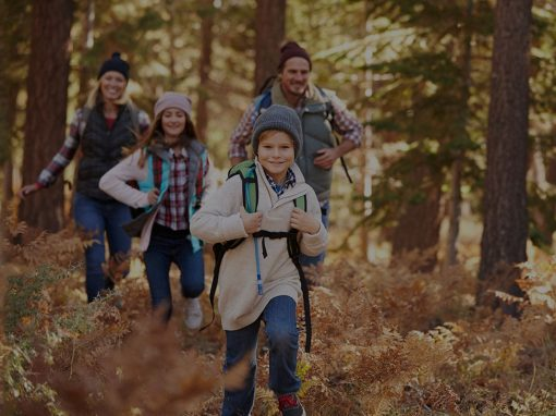 Diseño web de portal de actividades, Familysol